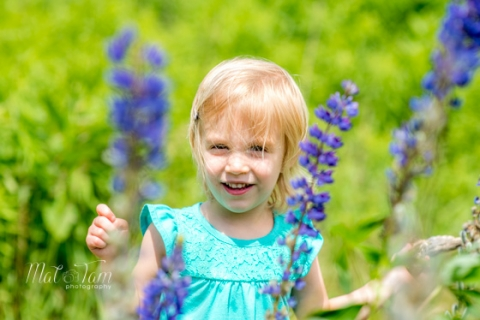 Great-Brook-Farm-best-Family-Portrait-Photo-Session-purple-flowers